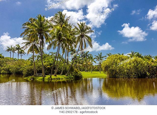 Fairchild Tropical Botanic Garden an 83 acre tropical botanical garden in Coral Gables Florida