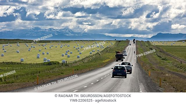 Route One with farmland on the South Coast of Iceland