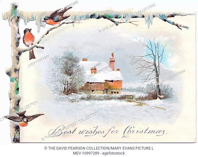 Snow scene with robins and a cottage on a Christmas card