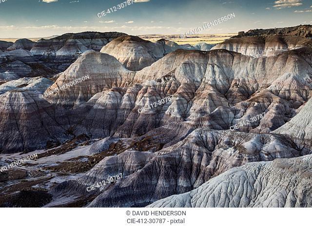 Blue Mesa Petrified Forest National Park, Arizona United States