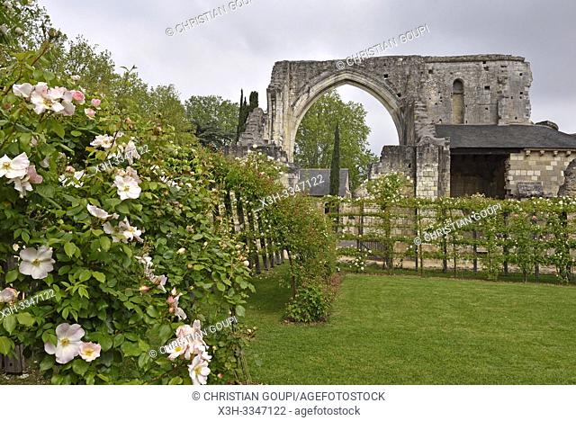 jardin de rosiers du Prieure Saint-Cosme a La Riche pres de Tours en Touraine, departement Indre-et-Loire, region Centre-Val de Loire, France