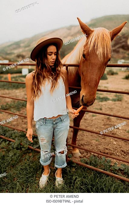 Young woman in felt hat feeding carrot to horse, Jalama, California, USA