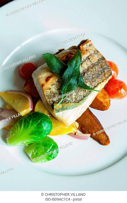 Grilled fish cutlet on plate