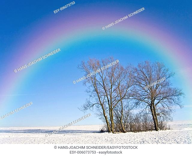 winter landscape with rainbow