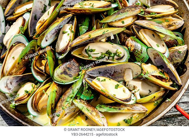 New Zealand Green-Lipped Mussels, Restaurant, Waipu, North island, New Zealand