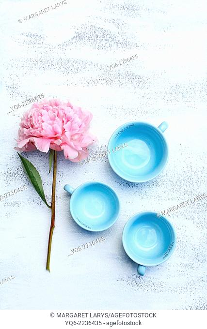 Blue pastel teacups and pink peonies on white