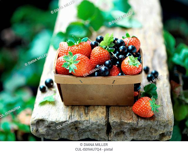 Strawberries and blackcurrants in vintage wooden basket