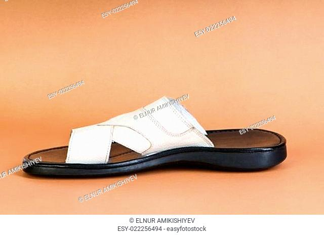 Fashion concept - Summer shoes on the background