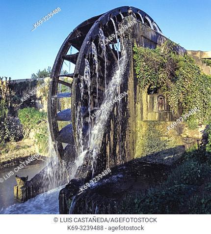 Water Wheel. Murcia. Spain