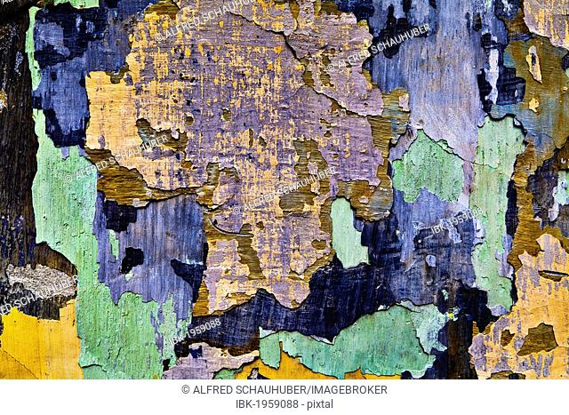 Facade with flaking paint, Krems, Lower Austria, Austria, Europe