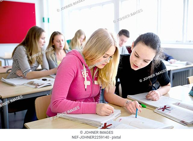 Teenage girls learning in classroom