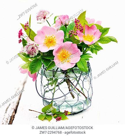 Roses and Astrantia in glass vase