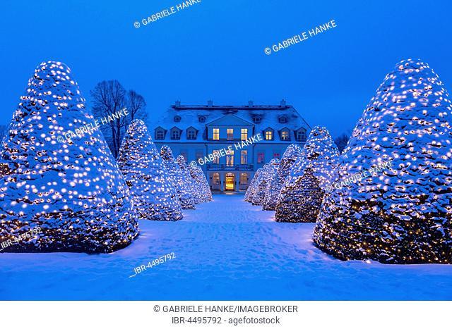 Wackerbarth castle with Christmas lights in the winter twilight, Radebeul, Saxony, Germany