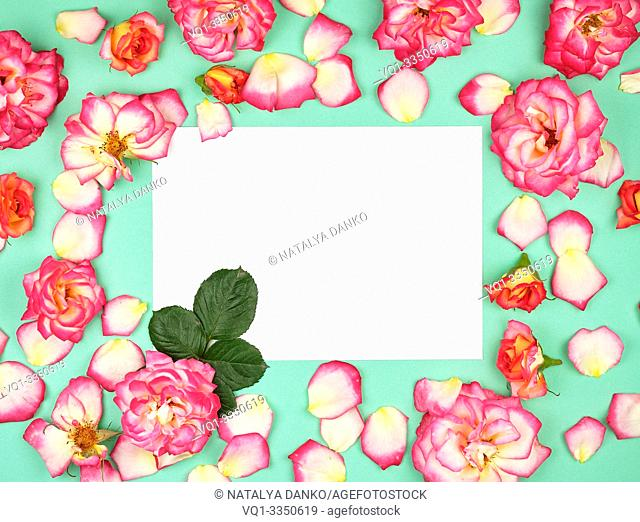 empty white paper sheet and buds of pink roses, festive background, copy space