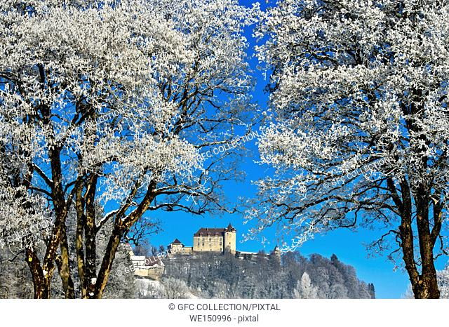 Gruyeres Castle behind frosty trees on a cold winter day, Gruyeres, Switzerland