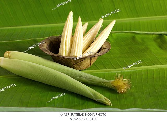 Food , Baby corns in husks on banana leaf