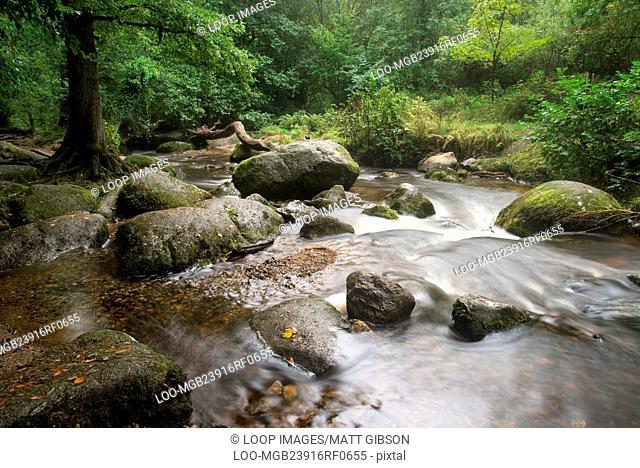 Becky Falls waterfall landscape in Dartmoor National Park England