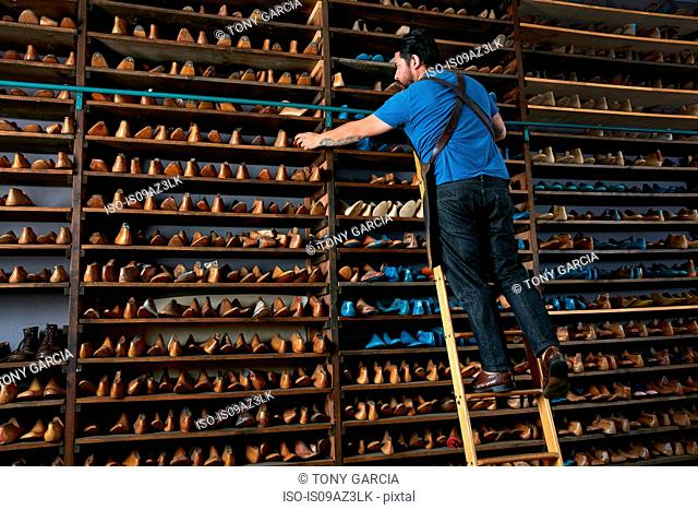 Male cobbler in traditional shoe shop on ladder selecting shoe last