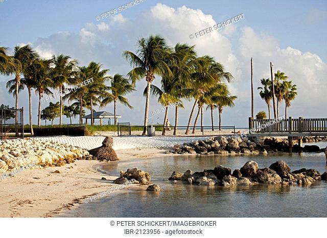 Sandy beach, Sombrero Beach, Marathon, Florida Keys, Florida, USA