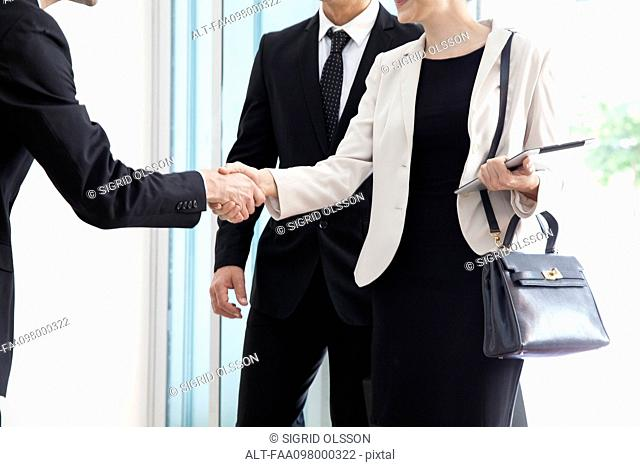 Businesswoman being introduced to business associate