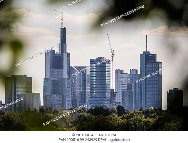 15 May 2019, Hessen, Frankfurt/Main: The bank towers of the Main metropolis seen through a leaf gap. Photo: Andreas Arnold/dpa