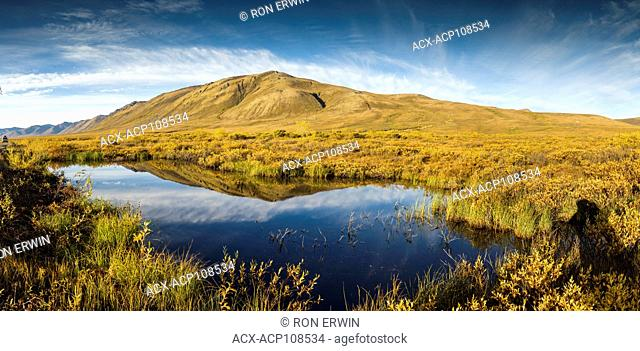 Surfbird Mountain reflection, Tombstone Territorial Park, Yukon (digitally spliced panorama)
