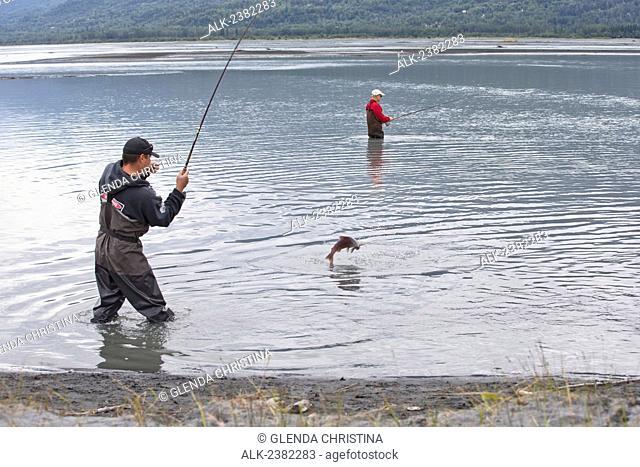 An Alaska Native fly fisherman with a Pink Salmon on his line at Jim Creek, Palmer, Southcentral Alaska