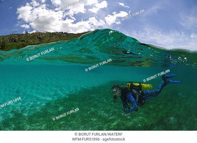 Diving in Lagoon, Alor, Lesser Sunda Islands, Indo-Pacific, Indonesia