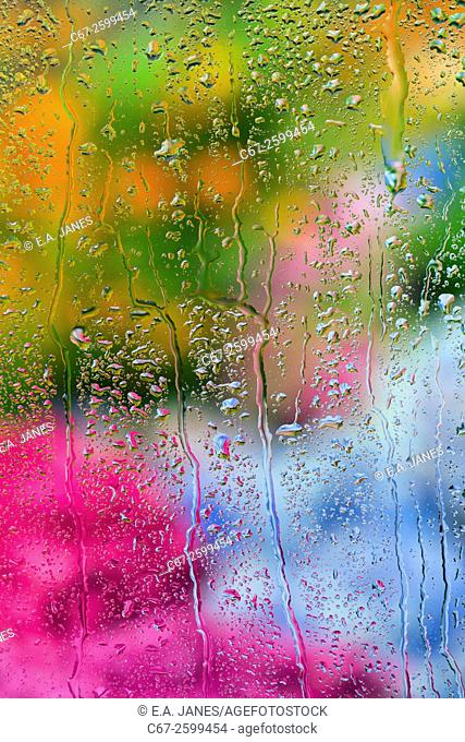 Rain drops on window glass overlooking garden