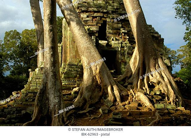 Khmer temple Preah Palilay grown in big trees Angkor Thom Siem Reap Cambodia