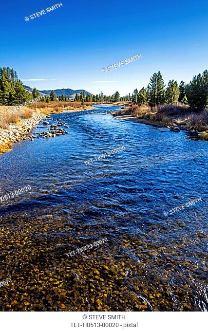 River in Stanley, Idaho