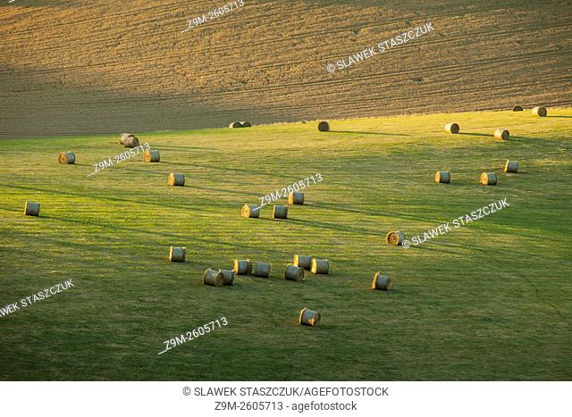 Hay bales in South Downs National Park near Eastbourne, East Sussex, England. Summer afternoon