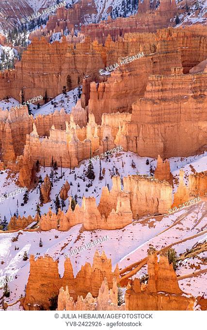 Bryce Canyon Hoodoos in Utah