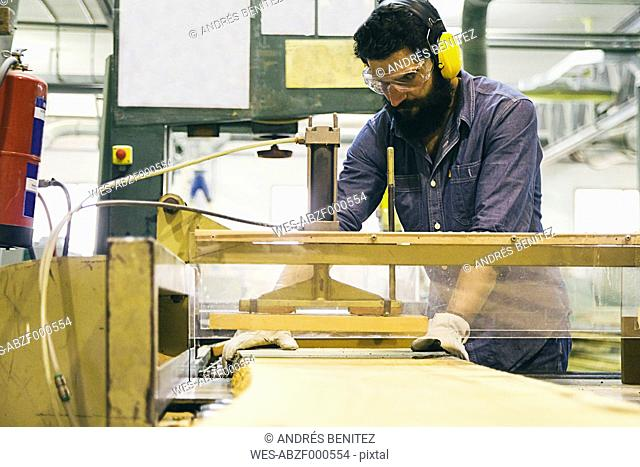 Craftsman with hearing protection, gloves and safety glasses using an industrial circular saw in a factory