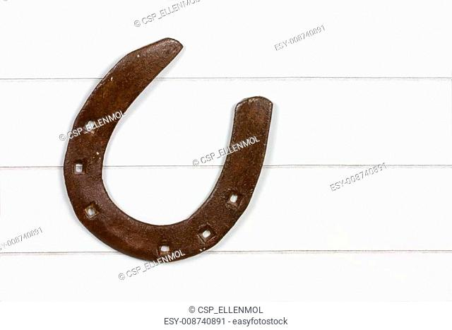 single horse shoe on wooden surface