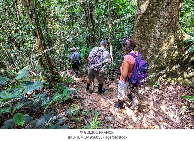 Nicaragua, Rio San Juan Department, Rio San Juan, excursion to Aguas Frescas in the Indio Maiz Biological Reserve