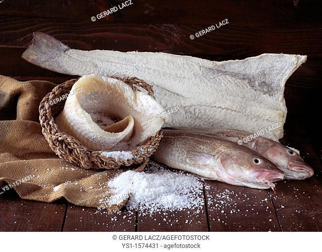 Fresh, Salted and Dried Cod, gadus morhua