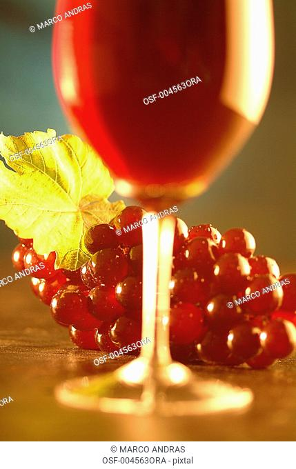 red wine glass and red grape bunch on the table