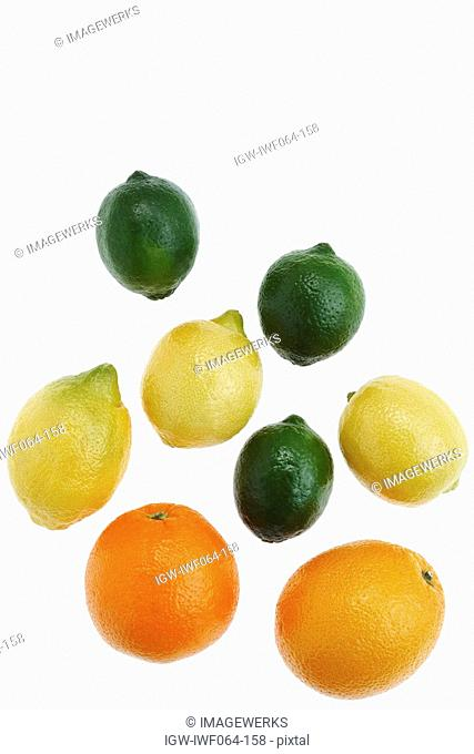 Lime, lemon, orange and grapefruit on white background, close-up