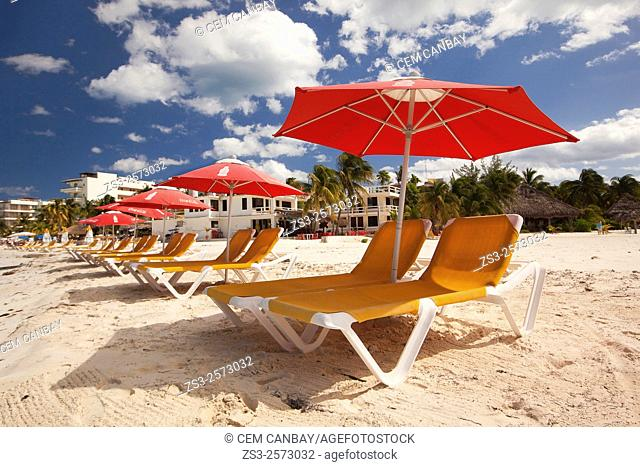 Parasols and deckchairs on the beach, Isla Mujeres, Quintana Roo, Yucatan Province, Mexico, Central America