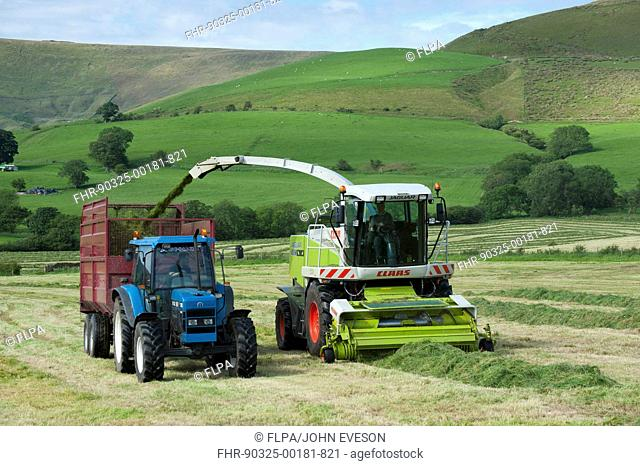 Forage harvesting grass for silage, forage harvester cutting grass and loading wagon, Bleasedale, Lancashire, England, june