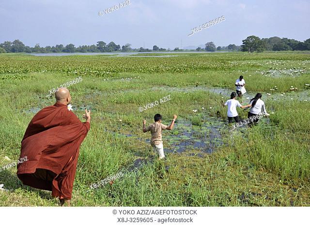 Sri Lanka, Polonnaruwa, monk