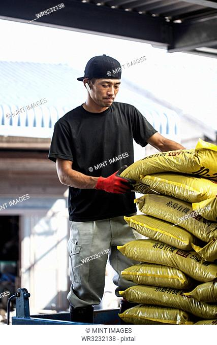 Japanese farmer wearing black cap stacking yellow plastic sacks