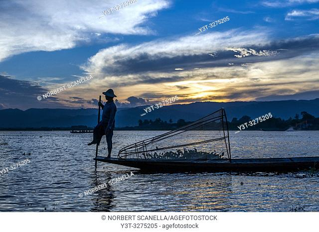 Myanmar (ex Birmanie). Inle lake. Shan state. Fisherman Intha, Inle Lake ethnic group