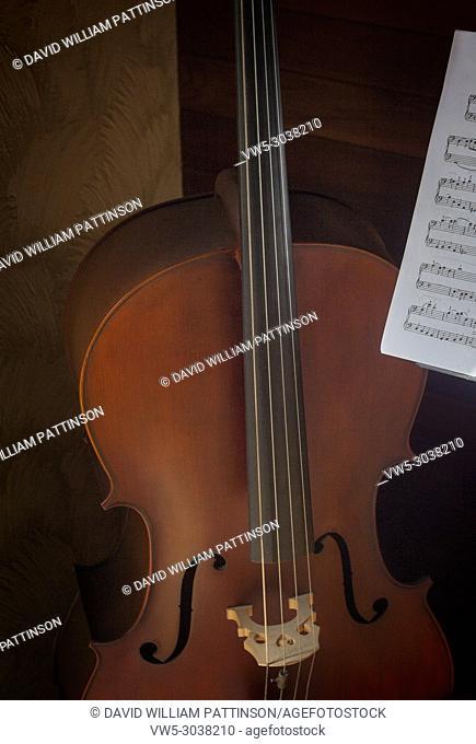 Cello Kelowna BC Canada