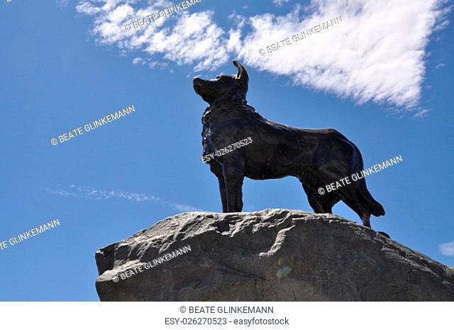 Neuseeland - Dog Monument am Lake Tekapo