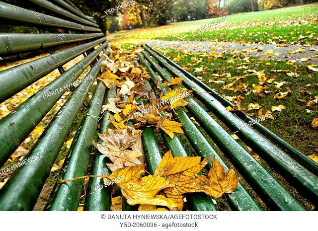 autumn scene, Park de Bude, Geneva, Switzerland
