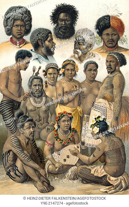 Historical illustration, 19th Century, ethnic groups of Oceania, Indigenous Australians, Australia,