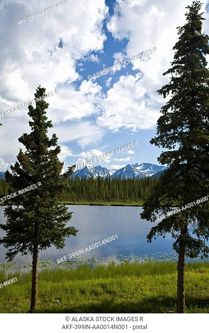 Scenic view of a lake in Denali National Park with the Alaska Range in the background during Summer