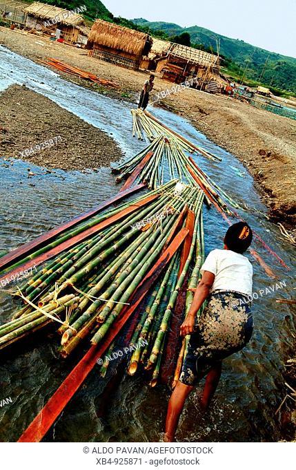 Bamboo rafts, Kuang Kyaung along Laymyo river, Rakhine State, Burma